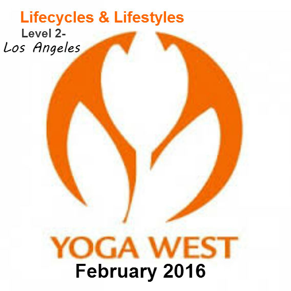 Lifecycles & Lifestyles: Level 2 Teacher Training- Yoga West, Los Angeles
